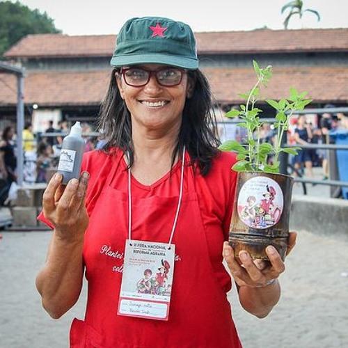 Momento Agroecológico: Assentamentos do MST apostam no cultivo de plantas medicinais