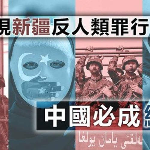 【桑海神州】再漠視新疆反人類罪行,中國必成納綷!