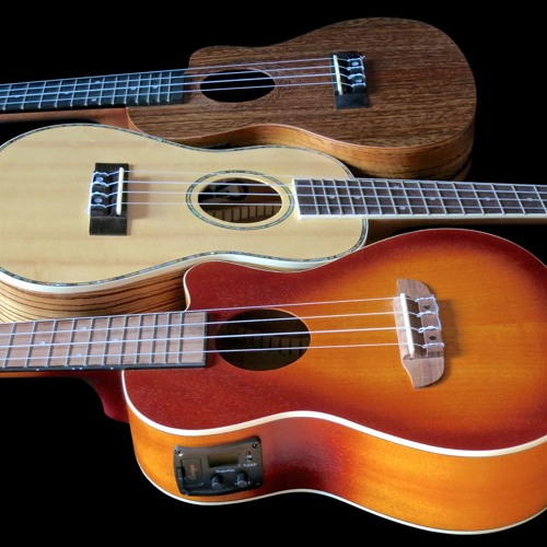 Concert ukes w PUs – Tanglewood TWT-12E miked