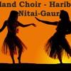 Transcendental Waves - Island Choir (Haribol Nitai - Gaur)
