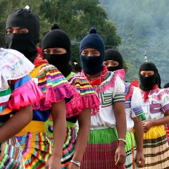 To Those Who Work It: Ricardo Flores Magón and the EZLN