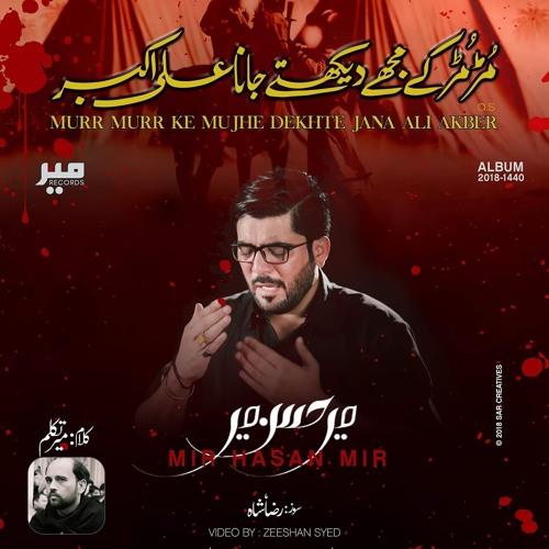 Murr Murr Kay Mujhe Dekhte Jana Ali Akber (as) | Mir Hasan Mir New