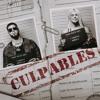 CULPABLES - KAROL G FT ANUEL AA Portada del disco