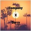 Justin Bieber and Selena Gomez - Company X Sorry(NerdyMusic)