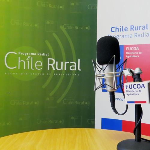 Chile Rural: Programa N° 37 (Especial Fiestas Patrias)