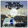The Black Eyed Peas - I Gotta Feeling (LUM!X Hardstyle Remix)