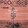 P'romises (Barry Harris Remix)