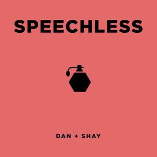 Speechless (Dan + Shay cover)