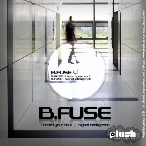 B Fuse - I Heard Your Soul [PLUSH008D]
