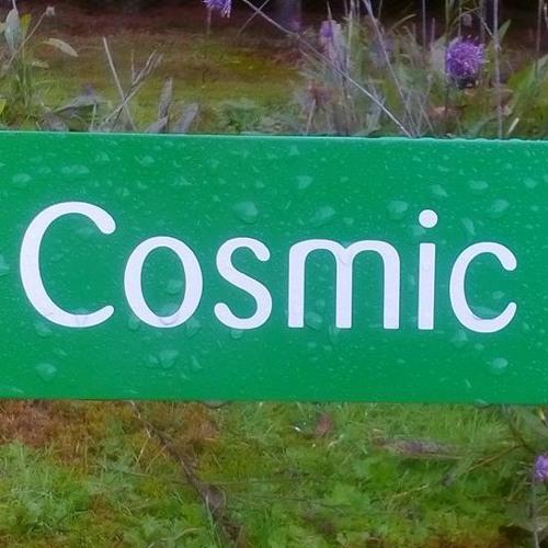 The Cosmic Pond by The Shunyata Improvisation Group