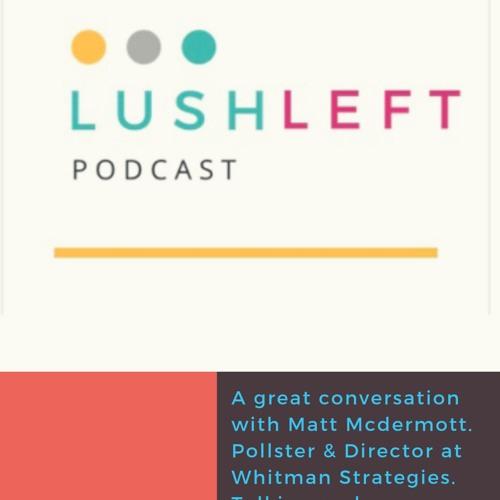 Conversation with Matt McDermott, pollster, Director at Whitman Strategies