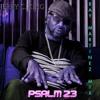 Download Psalm 23 - Jerry C King (Ray Martinez Mix) Mp3
