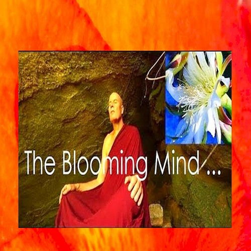 DoA #95: The Blooming Mind