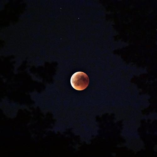 Moonlight | Cloud Rap Beat