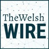 The Welsh Wire featuring Mary Jo Asmus of Aspire Collaborative Services, LLC