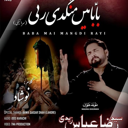 Nohay 2018 - BABA MAIN MANGDI RAHI-seraiki | Syed Raza Abbas Zaidi