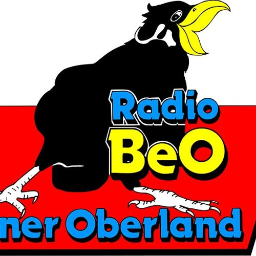 Radio Beo Live an der OHA 2018