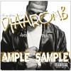 Ample Sample: Jay-Z (In My Lifetime Vol.1)