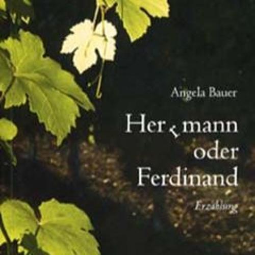 Angela Bauer | Herrmann oder Ferdinand | Erzählung