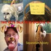 Ep 15 - Separation Anxiety, Diabetes Part 2, Puppy & Kitten Vaccinations