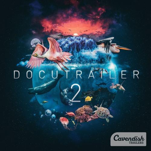 """Flaring Sun - """"Docutrailer 2"""" (CAVT46)"""