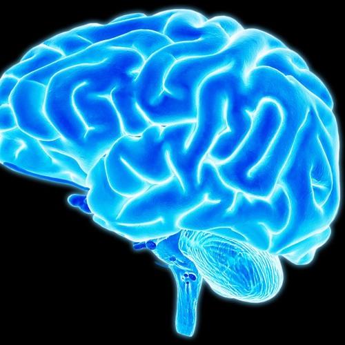 IFSCnaComunidade #80 paralisia cerebral inteligência, dúvida site cursos, música Olhos Certos