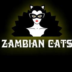 ZAMBIAN CATS:   EARN THE  LOVE