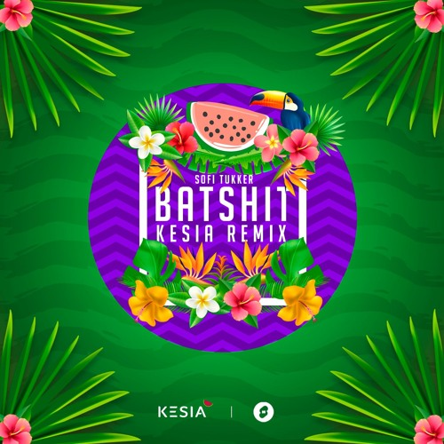 Sofi Tukker - Batshit (Kesia Remix) *FREE DOWNLOAD*