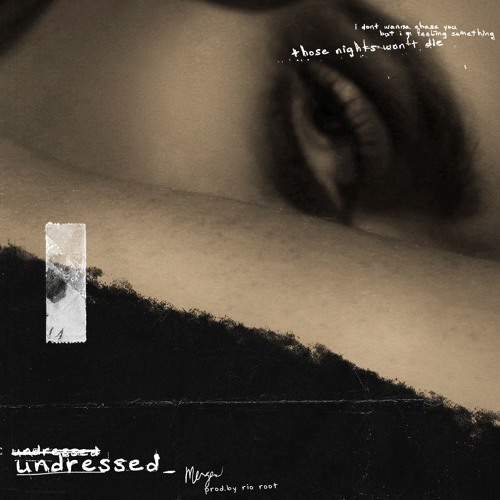 undressed (Prod. by Rio Root)