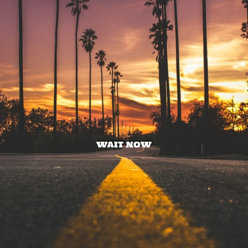 Wait Now ft Justin Mercurio & Camila Paiva