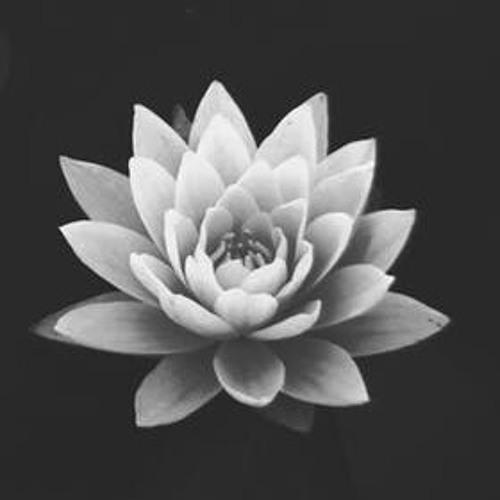 el mindfulness en el dia dia.3gp
