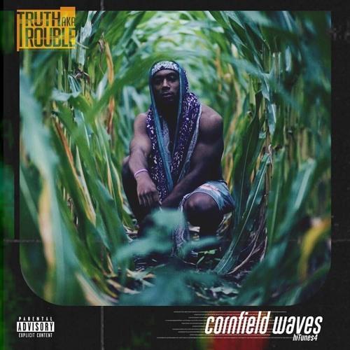 Cornfield Waves