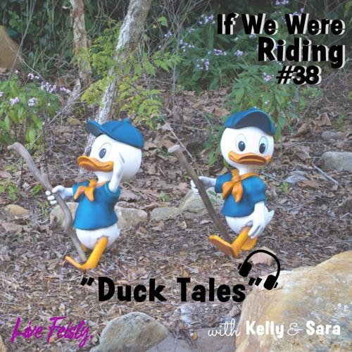 #38 Duck Tales