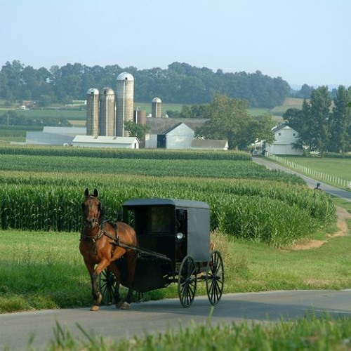 Conference on Amish issues to be held in Lancaster