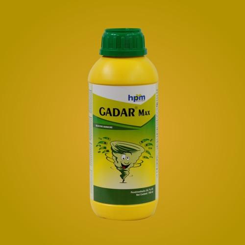 HPM presents HPM Gadar Max