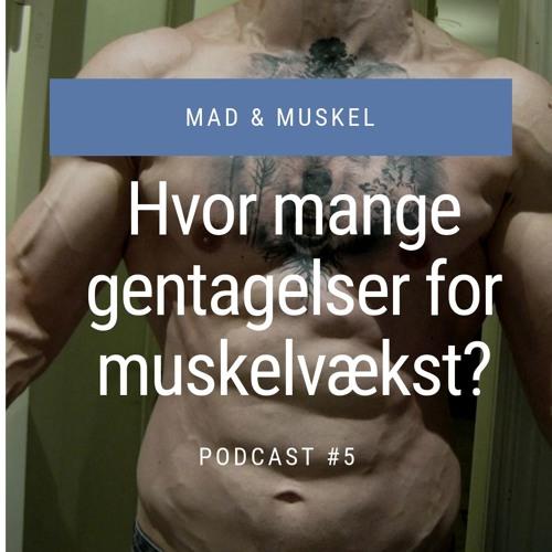#5 Hvor mange gentagelser skal du lave for muskelvækst?