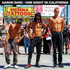AARON DARC / ONE NIGHT IN CALIFORNIA (DJ MIX) *tech house*
