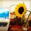 Sunflower (cover)