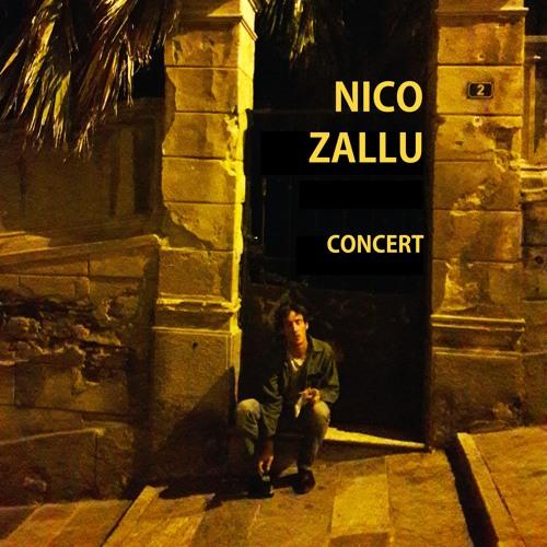 Nico Zallu Demo