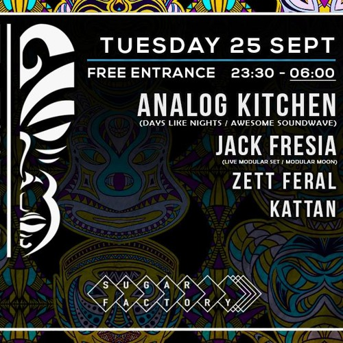 Analog Kitchen Techno Tribe September 2018
