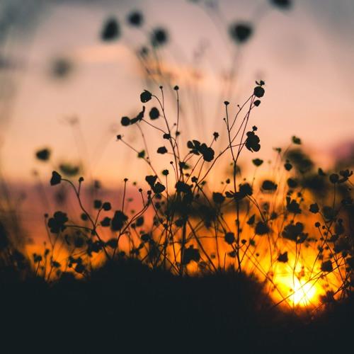 Hymn for a Summer Twilight
