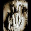 Tres versos tomando las dos manos de un amor...
