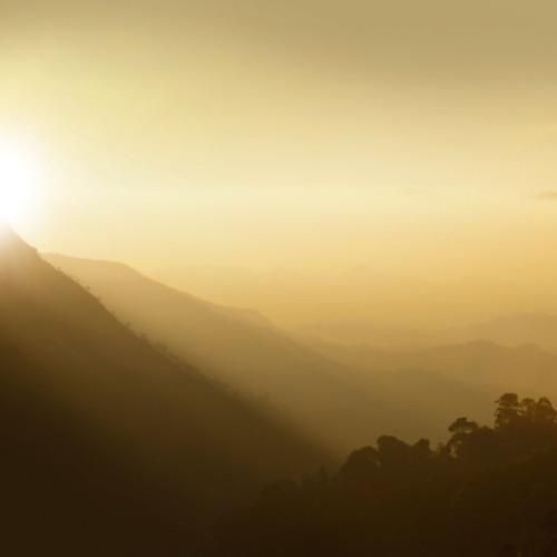 Morning Mist 晨靄