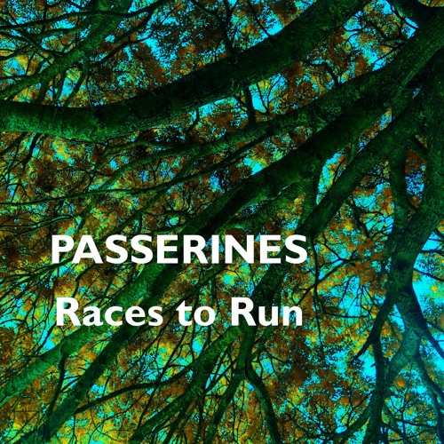 Races to Run