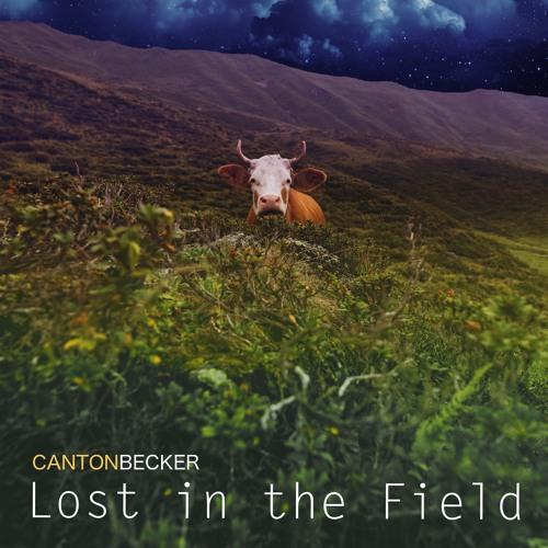 Lost In The Field