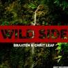 Braaten & Chrit Leaf - Wild Side