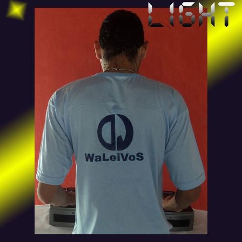13 - Light