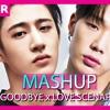 IKON - GoodBye Road x Love Scenario (KPOP MASHUP TEASER) VOTE