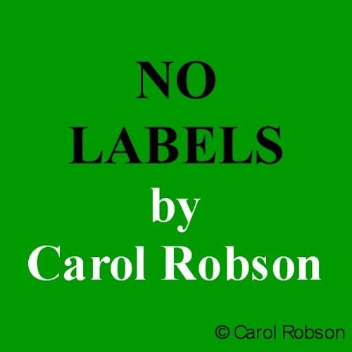 No Labels by Carol Robson