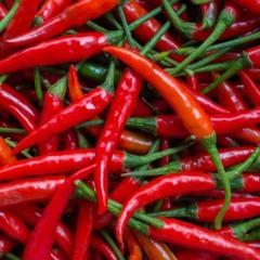 Spicy Beat